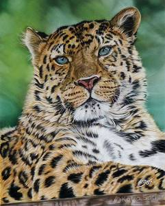 Wildtiere in Pastellkreide / Wildlife in soft pastels (40 cm x 50 cm)