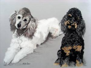 Hundeportraits in Pastellkreide / Dog portraits in soft pastels (30 cm x 40 cm)
