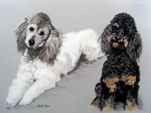 Hundeportraits in Pastellkreide / Dog portraits in soft pastels (30 cm x 40 cm)