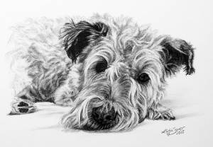 Hundeportraits in Kohle / Dog portraits in charcoal (15 cm x 21 cm)