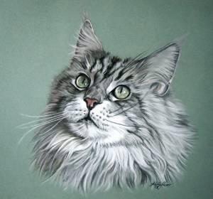 Katzenzeichnungen in Pastellkreide / Cat drawings in soft pastels (30 cm x 40 cm)