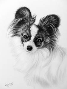Hundeportraits in Kohle / Dog portraits in charcoal (21 cm x 30 cm)