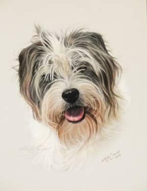 Hundezeichnungen in Pastellkreide / Dog paintings in soft pastels (18 cm x 24 cm)