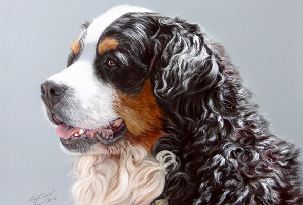 Dog paintings and dog portraits by Katja Sauer