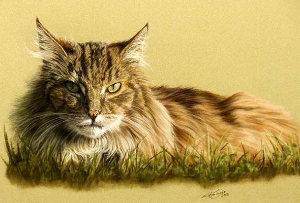 Cat paintings and cat portraits by Katja Sauer