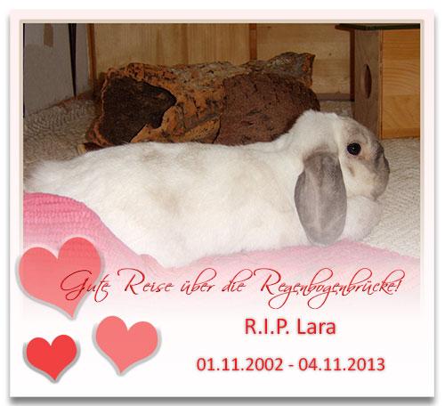 Lara-RIP