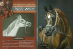 animal paintings and animal portraits Katja Sauer - Desert Mirage Magazine