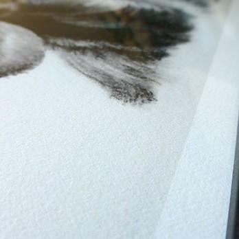 Kunstdrucke von Katja Sauer - FineArt Prints
