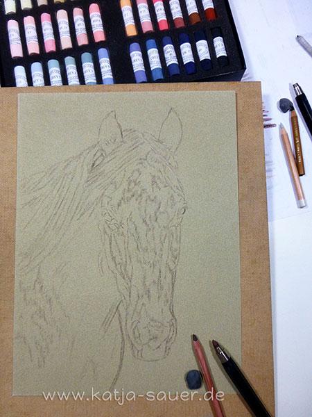 Vorzeichnung eines Pferdeportraits in Pastellkreide von Katja Sauer