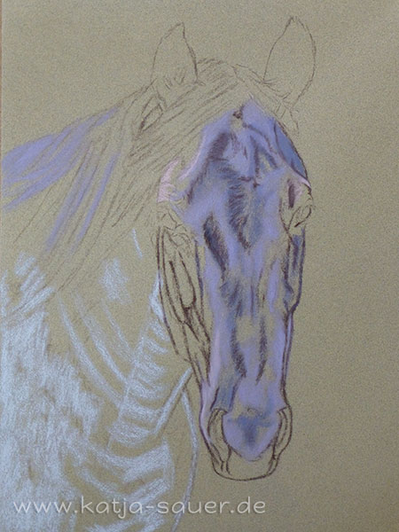 Undercoat of a horse portrait in soft pastels by Katja Sauer