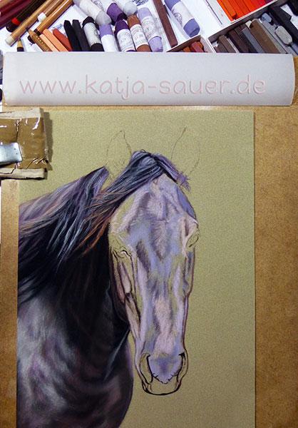 Ausarbeitung der Details eines Pferdeportraits in Pastellkreide von Katja Sauer