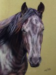"Quarter horse Stute ""Magic Spirit of Hope"" in Pastellkreide von Katja Sauer"