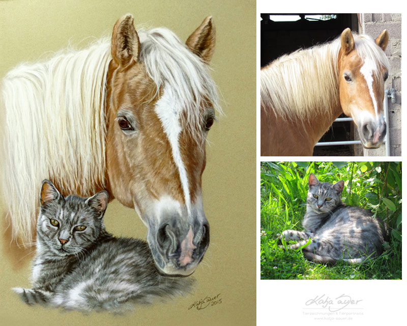 Animal paintings and animal portraits by Katja Sauer