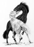 Pferdezeichnung in Kohle von Katja Sauer