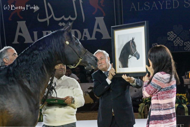 Gazal Al Shaqab at All Nations Cup 2017 in Aachen and Awarding of the painting in soft pastels by Katja Sauer