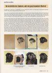 Tierzeichnungen und Tierportraits - Artikel über Pastellzeichnung Neufundländer von Katja Sauer