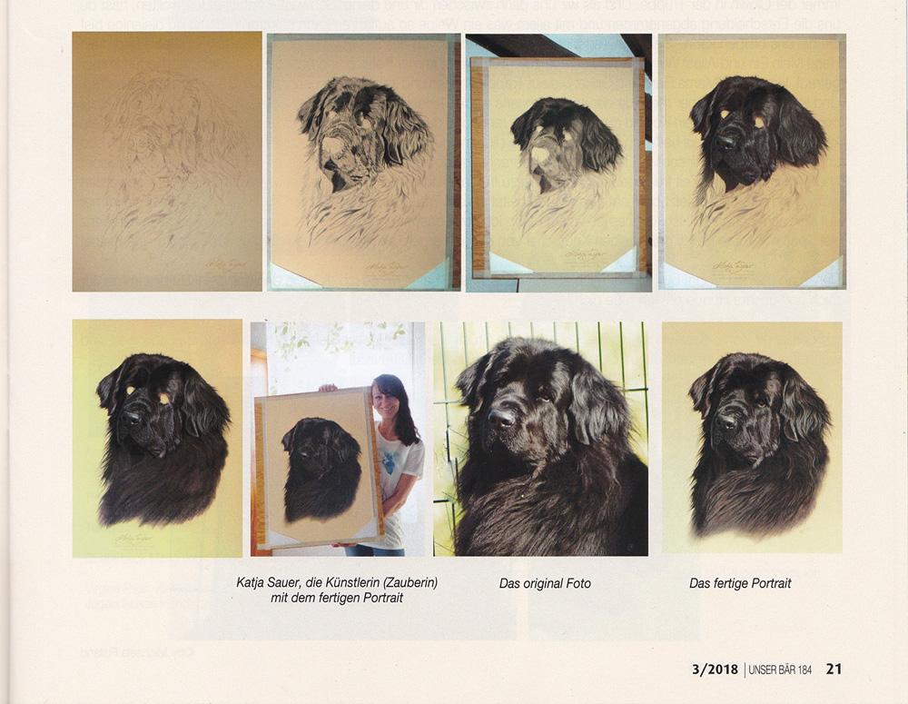 Tierzeichnungen von Katja Sauer - Artikel in der Neufundländer Vereinszeitschrift DNK