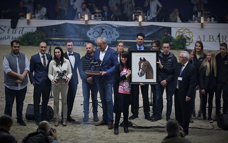 """Araberhengst PADRONS PSYCHE in Pastellkreide von Katja Sauer - """"Lifetime Achievement Award"""" beim ANC 2018 in Aachen (Foto: Susanne Ismer)"""