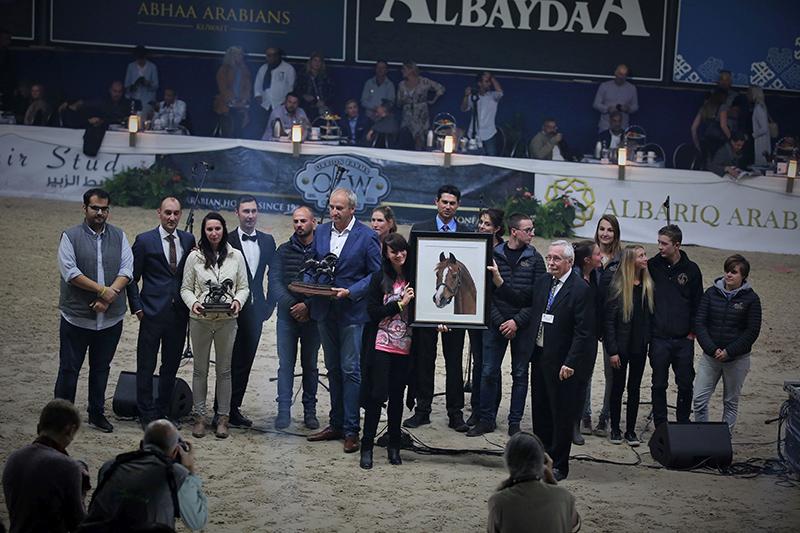 PADRONS PSYCHE in Pastellkreide - Award Verleihung beim All Nations Cup ANC 2018 in Aachen (Foto: Susanne Ismer)
