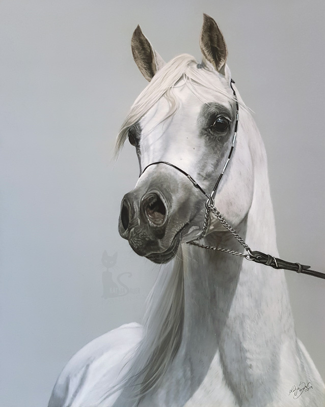 Al Lahab in pastels (40 cm x 50 cm) - All Nations Cup 2019 in Aachen