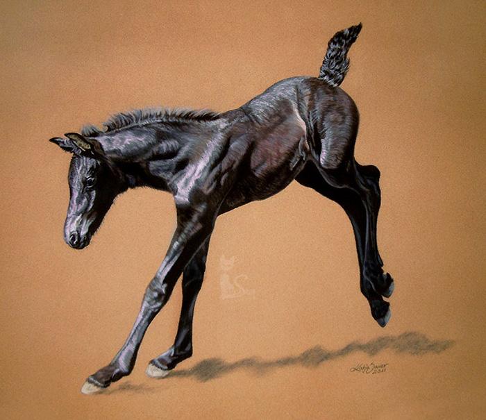 Pferdezeichnungen und Tierportraits in Pastellkreide - Friesenfohlen JIMKJE VOM SEENLAND (50 cm x 65 cm)