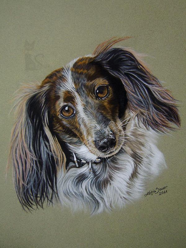 Hund HARLEE in Pastellkreide (30 cm x 40 cm)