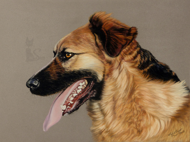 Schäferhund Mischling GINA in Pastellkreide (24 cm x 32 cm)