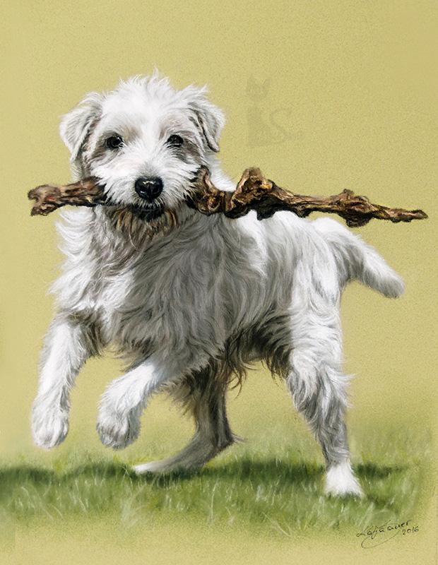 Parson Jack Russell Terrier WHISKY in Pastellkreide (24 cm x 32 cm)