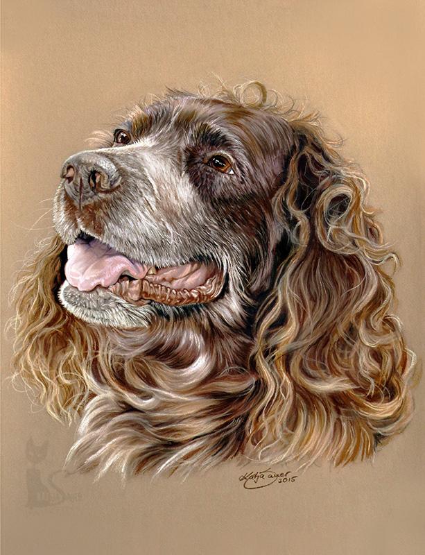 Deutscher Wachtelhund ZINO in Pastellkreide (24 cm x 32 cm)