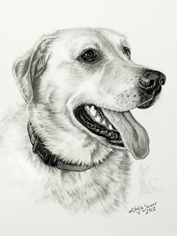 Labrador BIENE in Kohle und Graphit (15 cm x 21 cm)