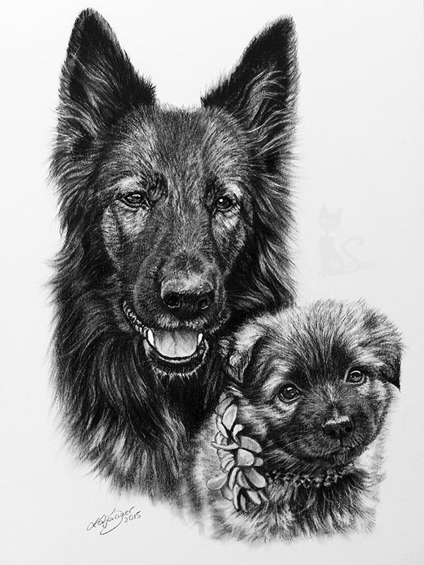 Schäferhunde KAYA und KIVA - Collage in Kohle und Graphit (21 cm x 30 cm)