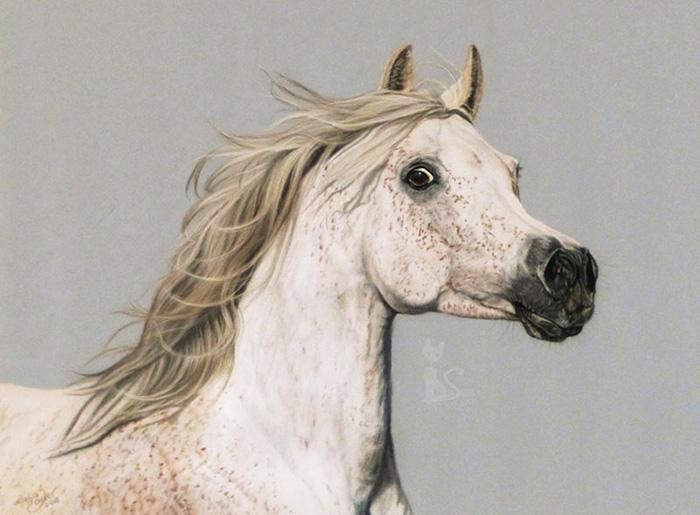 Tierzeichnungen und Pferdeportraits in Pastellkreide - Araberstute SHARIHA BINT SHANAH (30 cm x 40 cm) / Danke Julia Moll