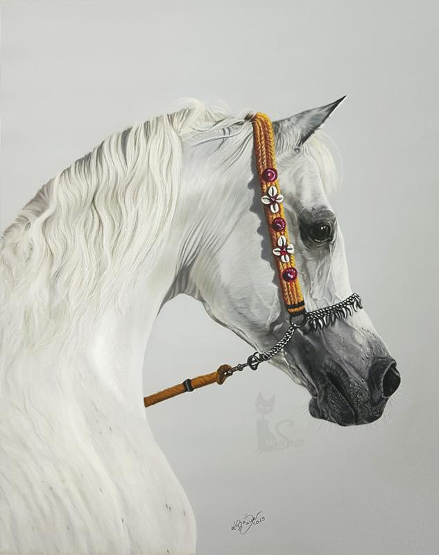 Tierportraits und Pferdezeichnungen in Pastellkreide - Araberhengst ANSATA HEJAZI (40 cm x 50 cm) / Danke Gigi Grasso