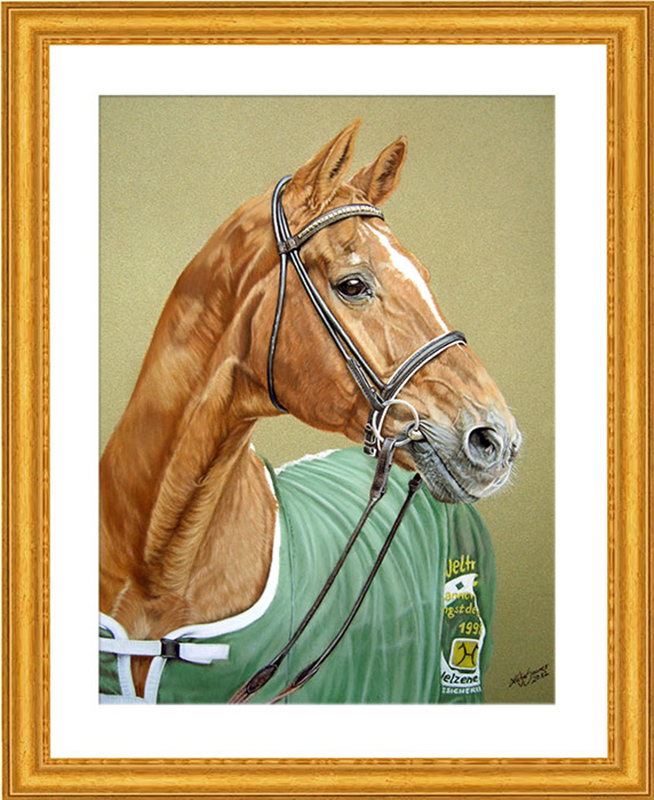 Pferdeportraits und Tierportraits von Katja Sauer - Hannoveraner Weltmeyer in Pastellkreide