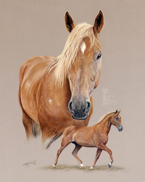 Tierportraits und Pferdezeichnungen in Pastellkreide - Collage FREDDY (40 cm x 50 cm)