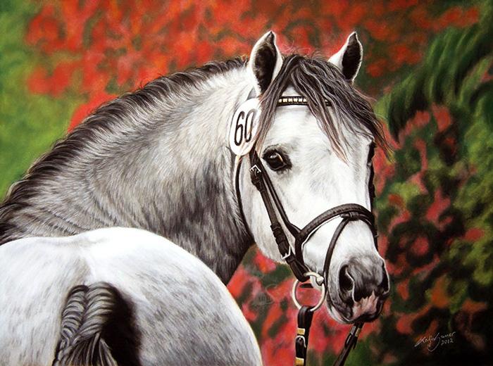 Pferdezeichnungen und Tierportraits in Pastellkreide - RED RUNNER (30 cm x 40 cm)