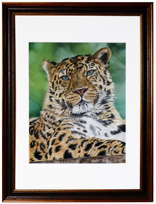 Tierportraits und Tierzeichnungen von Katja Sauer - Amur Leopard in Pastellkreide