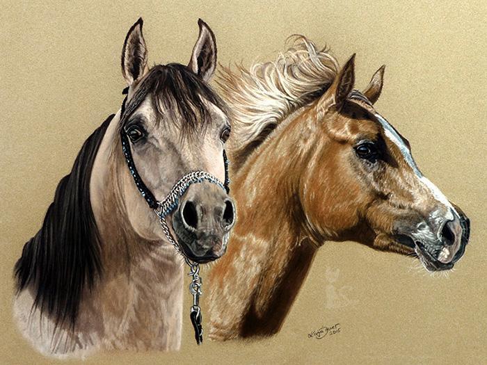 Pferdezeichnungen und Tierzeichnungen in Pastellkreide - Collage Araberpferde RIVERDANCE und PC AMAL (30 cm x 40 cm)