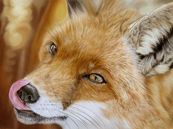 Tierzeichnungen-Fuchs-in-Pastellkreide-von-Katja-Sauer-30x40