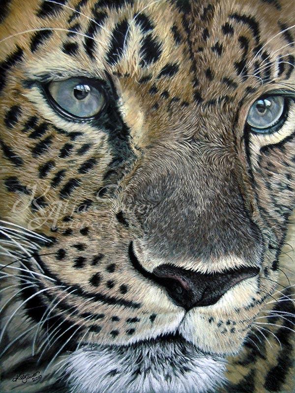 Tierzeichnungen und Tierportraits von Katja Sauer - Leopard in Pastellkreide (30 cm x 40 cm)