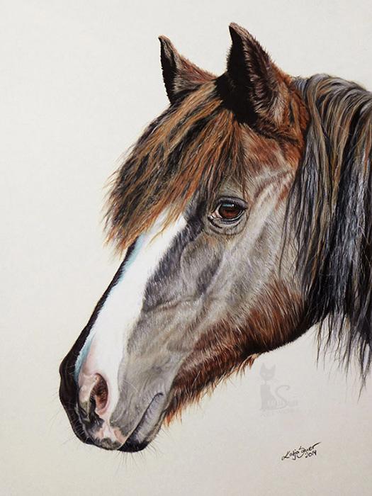 Pferdeportraits und Tierzeichnungen in Pastellkreide - AISCHA (24 cm x 32 cm)