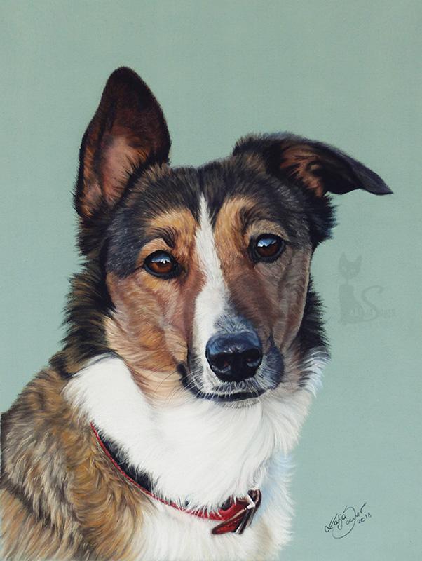 Hündin EMILY in Pastellkreide (24 cm x 32 cm)