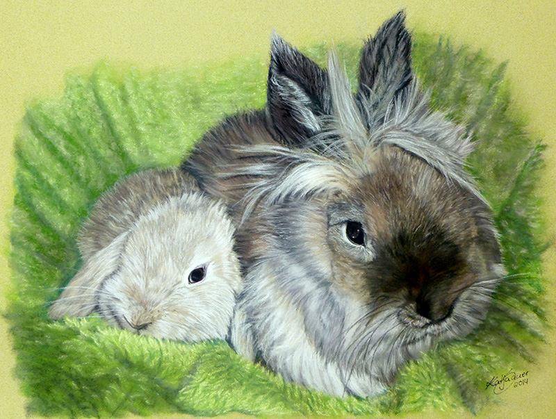Tierzeichnungen und Tierportraits in Pastellkreide - Zwergkaninchen MOTTE und MARLEY (24 cm x 32 cm)