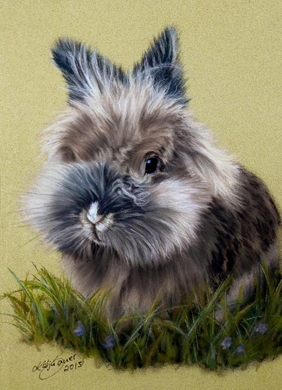 Tierzeichnungen und Tierportraits in Pastellkreide - Löwenköpfchen SCHNUCKI (16 cm x 24 cm)