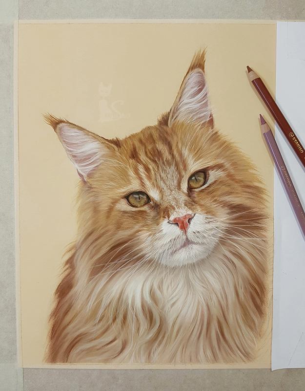 Tierportrait Katze in Pastellkreide gezeichnet nach Fotovorlage