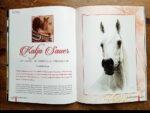 Tierportraits von Katja Sauer im Desert Heritage Magazine