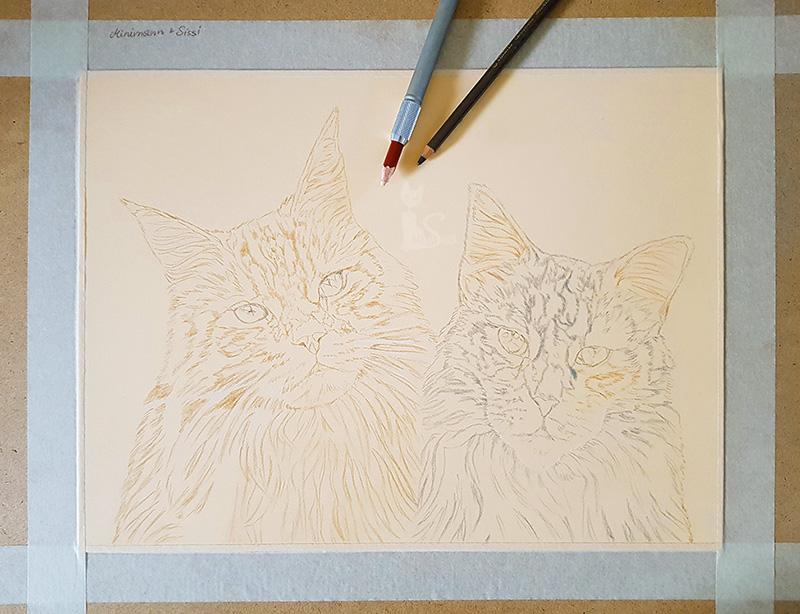 Pastellportrait Katzenzeichnung von Katja Sauer